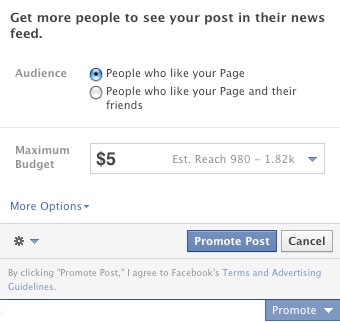Facebook Tool for Promoting Posts