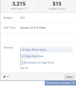 Facebook Total Promotion Details